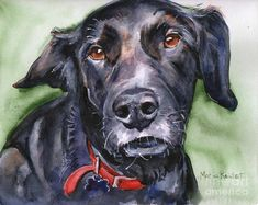 Black Lab In Watercolor Painting