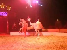 Summer Zippos Circus 2014 with her High School riding