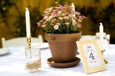 Intimate Backyard DIY Wedding - Love how they had a garden style flower theme and used potted plants for their centerpieces! Potted Plant Centerpieces, Diy Centerpieces, Potted Plants, Potted Flowers, Tall Centerpiece, Flower Pots, Cute Wedding Ideas, Diy Wedding, Wedding Reception