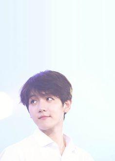 Exo Baekhyun Wallpaper Kpop Wallpaper Exo Baekhyun Exo Chanyeol