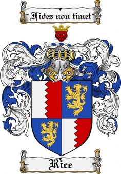 Rees Coat of Arms / Rees Family Crest - The surname of REES was of Welsh origin, a baptismal name 'the son of Rhys'. Early records of the name mention Rees (without surname) who was listed as a tenant . Family Shield, Commercial Art, Family Crest, Crests, My Heritage, Coat Of Arms, Symbols, Family History, Flag