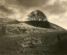Fay Godwin – Clump In Hollow, Summerhouse Hill, 1986 Best Landscape Photography, Landscape Photos, Art Photography, Famous Photographers, Landscape Photographers, Fine Art Photo, Photo Art, Black And White Landscape, Plein Air