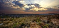 Melville (Koppies Nature Reserve), Best Photoshoot places in Johannesburg, South Africa
