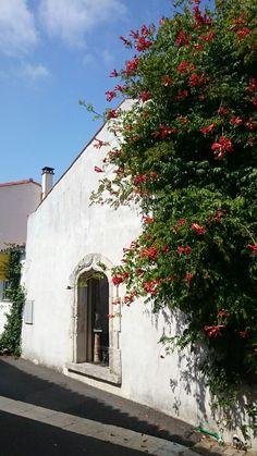 Mornac Sur Seudre/Poitou-Charentes
