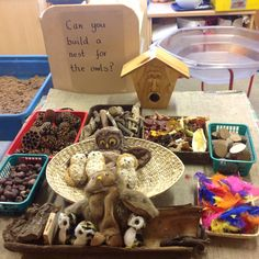 Owl Babies loose parts for nest building/imaginative play.