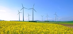 Earth's resources are limited. If we make changes to our lifestyle today, we can start protecting the environment for future generations. For example, wind is a nonpolluting and renewable energy source. We could use more wind turbines to generate electricity. | The Environment | Kids Discover