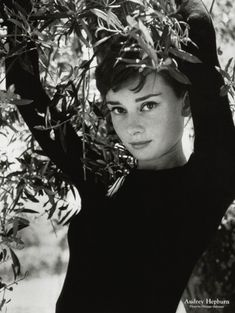 Audrey Hepburn - very beautiful classic angelic looking Hollywood actress