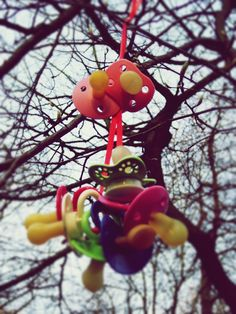 The Pacifier Tree, Frederiksberg, Copenhagen