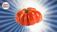 How to make tomatoes taste awesome again (video) - ReallyGood