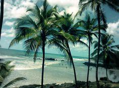 Praia do Havaizinho- Bahia, Brazil