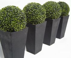 4 Unbelievable Tips and Tricks: Artificial Flowers Decoration artificial plants shelf.Artificial Plants Diy Floral Arrangements how to lay artificial grass.How To Lay Artificial Grass. Artificial Topiary, Artificial Plants And Trees, Artificial Plant Wall, Artificial Flowers, Artificial Grass Ideas Small Gardens, Artificial Turf, Boxwood Topiary, Topiary Trees, Topiaries