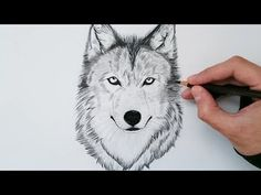 Super how to draw anime step by step artists 40 ideas Easy Drawings, Pencil Drawings, Trippy Patterns, Wolf Sketch, How To Draw Steps, Watercolor Video, Sketches Tutorial, Step By Step Drawing, Drawing Ideas