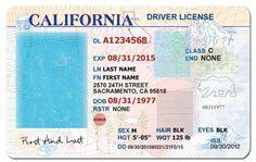 california drivers license template - Google Search                                                                                                                                                                                 More