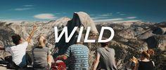 WILD on Vimeo