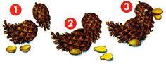 Billedresultat for acorn animals