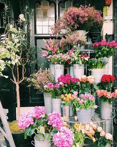 Hicri 1439 yılı güzelliklerle gelsin, hepimiz için hayırlı olsun 💐😌 #hijri1439 #1439h #naturalbeauty #flowers #colorful #liberty #libertylondon #london #uk #throwback #latergram