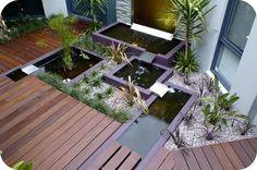 roof top water garden & decks