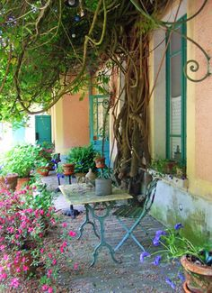 - creepers give summer shade and let winter light in. Garden Vignette Ideas, Claude Monet, Giverny France, Provence France, Winter Light, Summer Winter, Creepers, Outdoor Rooms, Trellis