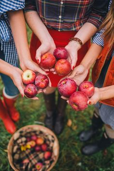 Gal Meets Glam Apple Picking In Vermont Apple Orchard Photography, Tree Photography, Autumn Photography, Apple Farm, Apple Picking Farm, Apple Picking Outfit, Apple Harvest, Autumn Harvest, Warm Autumn