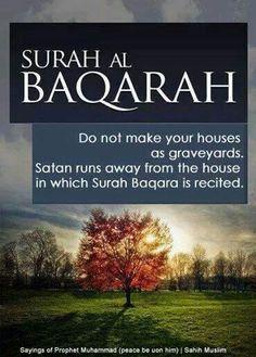 Ward off Satan surah al baqara read it in your homes