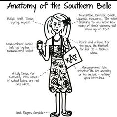 Anatomy of the Southern Belle