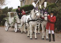 Beautiful white Horse drawn wedding carriage