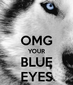 OMG YOUR BLUE EYES