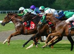 The Knowledge Track: Understanding Horserace Betting Terms