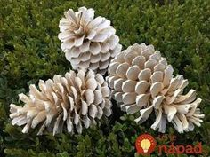 Deborah Silver and Co Inc – Page 2 Bleach Pinecones, Pine Cones, Diy And Crafts, Wreaths, Simple, Flowers, Plants, Christmas, Handmade