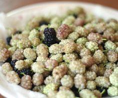 White mulberries.