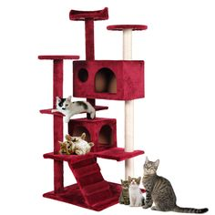 Red Wine Cat Tree Tower Condo Furniture Scratch Post Kitty Pet House Play