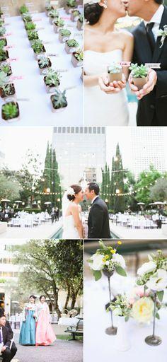 Succulents at a Wedding