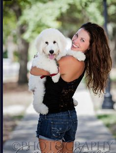 This is an English Goldendoodle from Smeraglia