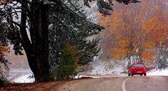 Bursa Kent Konseyi Uludağ Çalışma Grubu, tarafından Keşiş Dağı'na 'Uludağ' adının verilmesinin 87. yılı anısına '3. Uludağ Buluşması' etkinlikleri kapsamında '4 Mevsim Uludağ' karma fotoğraf sergisi açıldı.
