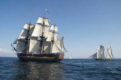 shipsshipships:  The dear #hmssurprise