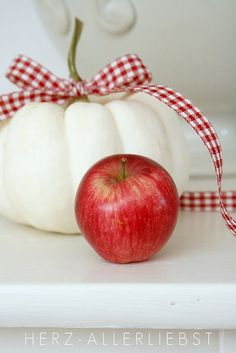 Red and white autumn