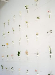 This floral wall is pure botanical goodness. Rows of single stems bring beauty to a clean space. 30 Minimalist Wedding Ideas for the Cool Bride Looking for minimalist wedding decor ideas? These minimalist ideas prove that for wedding decor less is Flower Wall Wedding, Floral Wedding, Diy Wedding, Wedding Flowers, Wedding Ideas, Botanical Wedding Theme, Wedding Favors, Wedding Souvenir, Bali Wedding