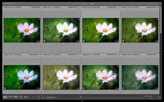 5 Ways to Use Lightroom Virtual Copies Better