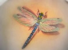 Category: 3D dragonfly tattoo - Picture: 3D dragonfly tattoo ...