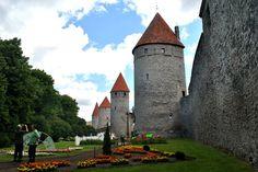 Tallinna vanalinn / Tallinn old town in Tallinn, Harju maakond