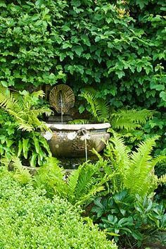 Fountain surrounded by the lushest greenery