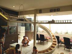 interior cat cafe - Google-søk                                                                                                                                                                                 More