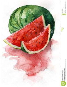 Watercolor Watermelon - Download From Over 63 Million High Quality Stock Photos, Images, Vectors. Sign up for FREE today. Image: 28047934