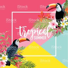Tropical Flowers and Toucan Birds Summer Banner, Graphic Background, Exotic Floral Invitation, Flyer or Card. Modern Front Page in Vector royalty-free stock vector art