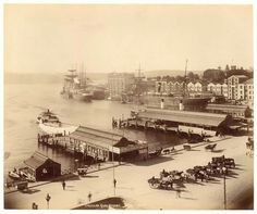 Circular Quay, Sydney from Fred Hardie - Photographs of Sydney, Newcastle, New South Wales and Aboriginals for George Washington Wilson & Co., by State Library of New South Wales collection Sydney City, Old Pictures, Old Photos, Aboriginal History, Botany Bay, New South, Historical Pictures, Sydney Australia, Australia