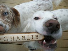 Charlie's a lucky boy! Dawg Stick - Dog Toy Wooden Throwing Stick with Instructions/Personalized  with A Wood Burned Name for Outside Fun and Games.