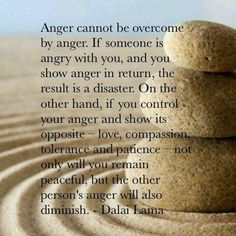 Anger cannot be overcome by anger.