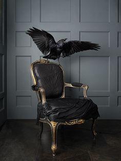 scary hair home decor rock room black dark amazing bird punk Alternative decor raven furniture goth gothic victorian Gothic House, Victorian Gothic, Victorian Decor, Casa Magnolia, Rock Room, Gothic Furniture, Gothic Chair, Goth Home, Gothic Home Decor