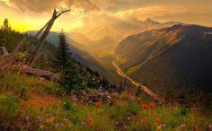 Обыкновенные люди опутаны мыслями о славе и выгоде, но в один голос кл� | Жизненный опыт....