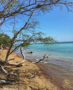 From @puertorico_greatshots .  G R E A T O F T H E D A Y  . - - - ---  --- - - - .  F E L I C I D A D E S  . . F O T O  @lan137 U B I C A C I Ó N  #CaboRojo #PuertoRico S E L E C C I O N A D A P O R  @yes_is_roxy . - - - ---  --- - - - . Fantástica fotografía nos ofrece @lan137 No olviden visitar su grandiosa galería!! . - - - ---  --- - - - . GRACIAS POR SEGUIRNOS @puertorico_greatshots. T A G  #puertorico_greatshots . 23 de junio de 2016 . - - - ---  --- - - - . Te invitamos a que sigas…